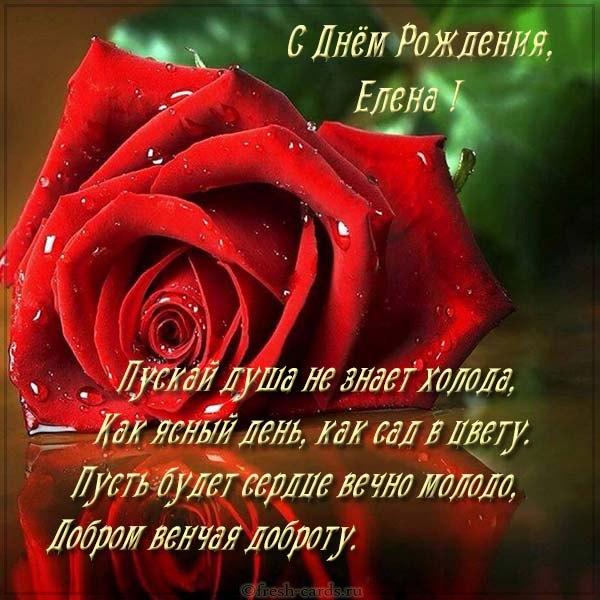 otkrytka-besplatnaya-s-dnem-rozhdeniya-zhenschine-imennaya-elena.jpg