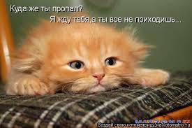 images_(27).jpg