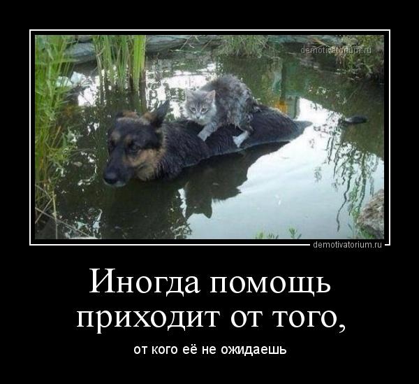demotivatorium_ru_inogda_pomosh_prihodit_ot_togo_168394.jpg
