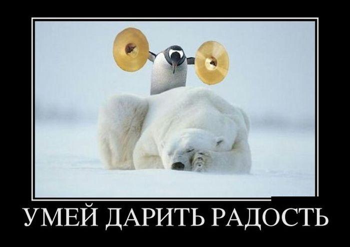 дари_радость.jpg
