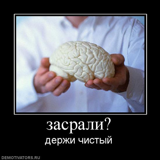 мозг_чистый.jpg