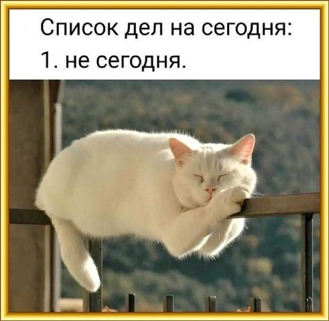 список_дел.jpg