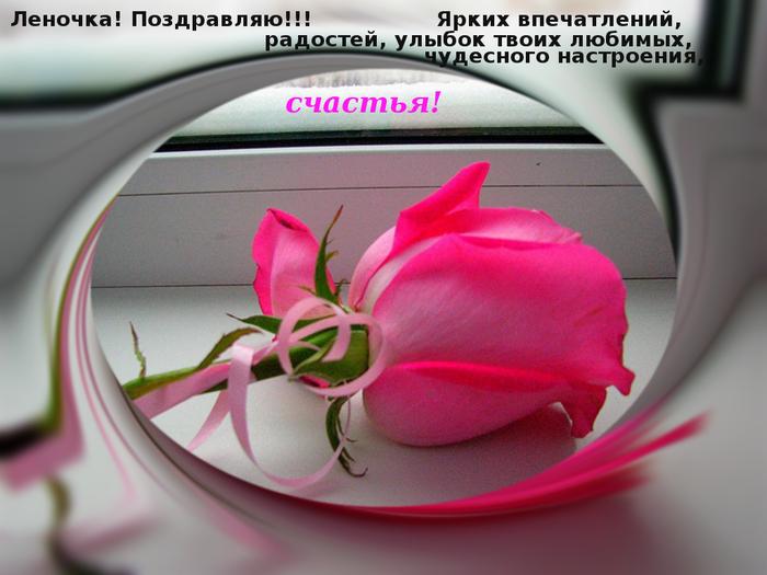 e94fc65884033c1683cb.jpg