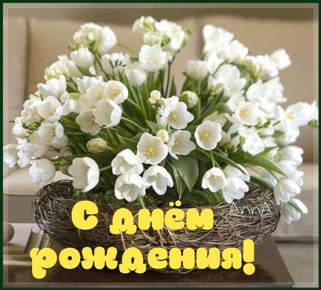 7d38b39f90788171868010c3c7e902ef--white-tulips-white-flowers.jpg