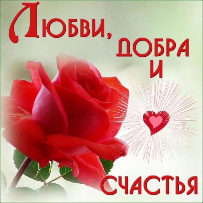 dobra-i-schastya.jpg