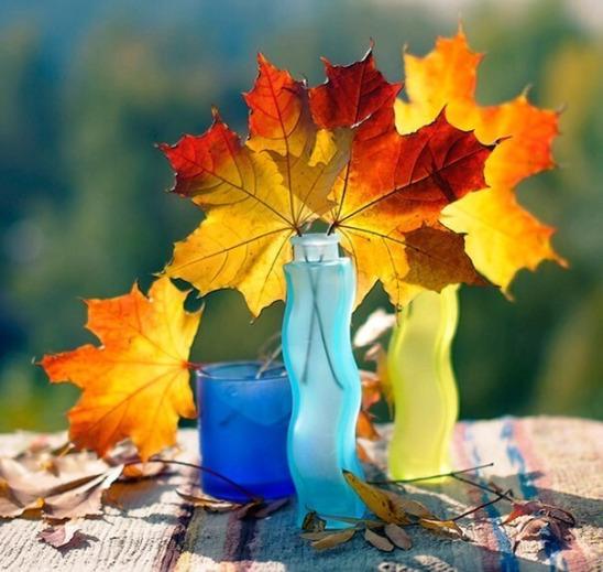 листьяя.jpg