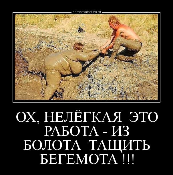 demotivatorium_ru_oh_nelegkaja__eto__rabota__iz__bolota__tashit___begemota__87773.jpg