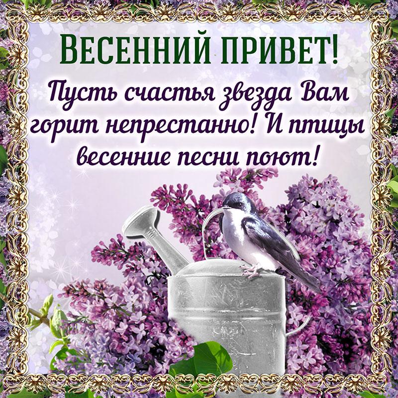 весен.приве_.jpg